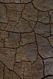 Треснутая деревянная предпосылка текстуры Стоковые Фото