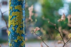 Треснутая желтая труба утюга сини стоковое изображение