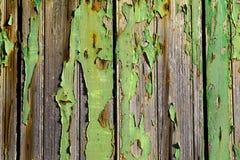 Треснутая зеленая краска на деревянной двери стоковое фото rf