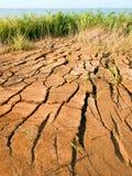 треснутая земля Стоковое Фото