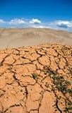 треснутая земля Стоковые Фото