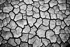 треснутая земля Стоковая Фотография