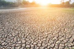 Треснутая земля, засуха, район неорошаемого земледелия, сухое дерево, сухая запруда Стоковое Изображение