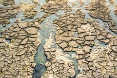 Треснутая земля, земля в засухе Стоковая Фотография