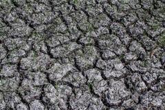 Треснутая земля как текстурированная предпосылка Стоковая Фотография