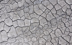 Треснутая земля на летний день, взгляд сверху Стоковые Фотографии RF