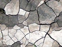 Треснутая земля от сухой погоды Стоковые Изображения
