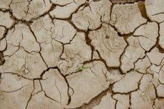 Треснутая земля, район неорошаемого земледелия Стоковые Изображения RF