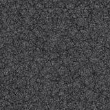 Треснутая земля Стоковые Изображения RF