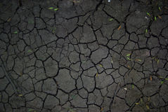 Треснутая земля Стоковое Изображение