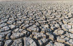 треснутая земля Стоковая Фотография RF