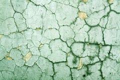 Треснутая зеленая текстура стены цемента Стоковая Фотография