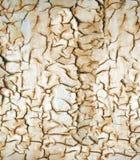 Треснутая и заржаветая текстура Стоковые Изображения RF