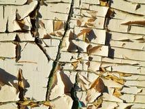 треснутая краска Стоковое Фото