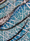 треснутая краска Стоковое Изображение RF