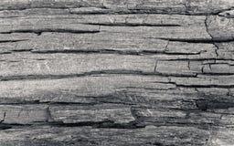 треснутая мертвая древесина Стоковое Фото