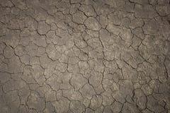 Треснутая пакостная земная текстура Стоковые Изображения