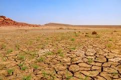 Треснутая почва в долине Стоковые Фотографии RF