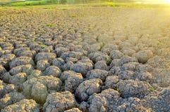 Треснутая почва в долине Стоковое Изображение