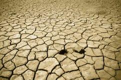 треснутая почва пустыни Стоковое фото RF