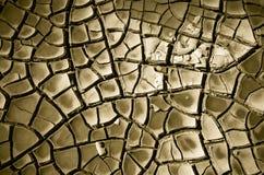 треснутая почва пустыни Стоковые Фотографии RF