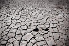 Треснутая почва пустыни Стоковые Изображения RF