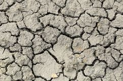 треснутая почва Стоковая Фотография