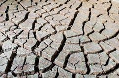 Треснутая почва Стоковые Фото