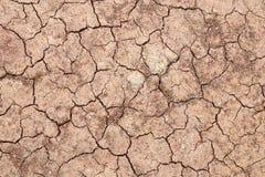 треснутая почва Стоковые Изображения