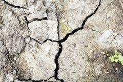 треснутая почва Стоковая Фотография RF