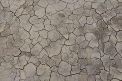 треснутая почва Стоковые Фотографии RF