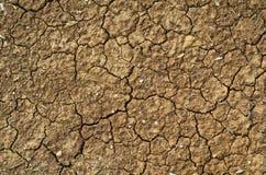 треснутая почва Стоковое Фото