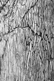 треснутая стена гранита Стоковое фото RF