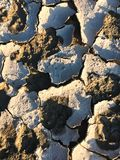 треснутая сухая земля стоковая фотография