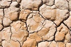 треснутая сухая земля Стоковые Изображения