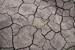 треснутая сухая земля Стоковые Фотографии RF