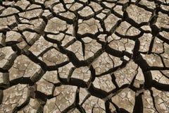 треснутая сухая земля Стоковое Фото