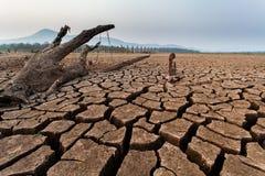 треснутая сухая почва Стоковые Изображения