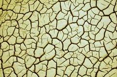 треснутая сухая текстура земли Стоковая Фотография