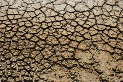 Треснутая текстура земли Стоковые Фото