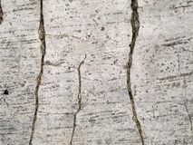 Треснутая текстура макроса - бетон - стоковые фотографии rf