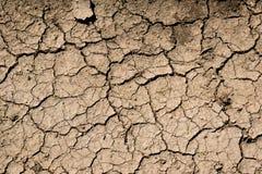 Треснутая текстура почвы Стоковые Изображения RF