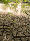 треснутое берег реки земли Стоковое Фото