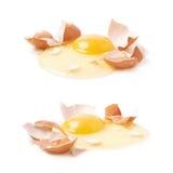 Треснутое сырцовое изолированное яичко цыпленка Стоковая Фотография RF