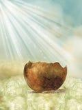 Треснутое яичко Стоковое фото RF