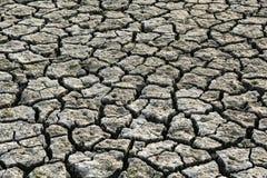 Треснутые земли отсутствие воды засушливый фотоснимок почвы Стоковая Фотография RF