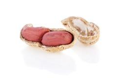 треснутые изолированные открытые арахисы стоковое изображение