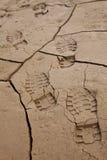 треснутые следы ноги земли Стоковые Фотографии RF