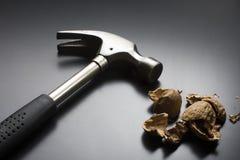 треснутый грецкий орех молотка Стоковые Изображения RF