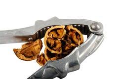 треснутый грецкий орех Щелкунчика Стоковое Изображение RF